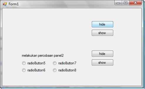 hasiil panel C#